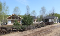 Посадка деревьев вдоль дороги в поселке фахверк